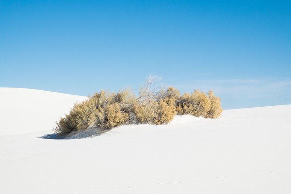 White Sands National Monument, USA